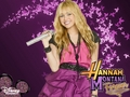 hannah-montana - Hannah Montana Wallpaper by Meghsie wallpaper