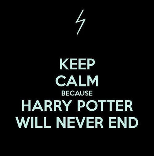 Harry Potter Will Never End.