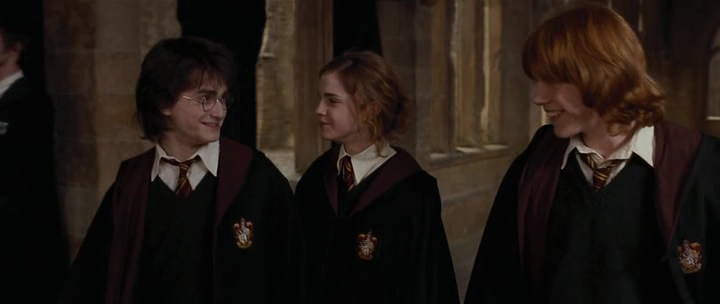 Harry Potter And The Goblet Of Fire 2005 Books Male Characters Image 30327632 Fanpop