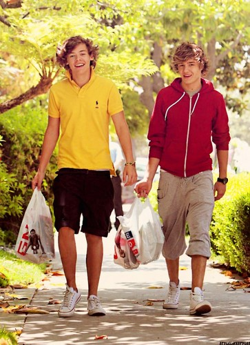 Harry and Liam <3