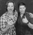 Jensen and Jared - jared-padalecki-and-jensen-ackles photo