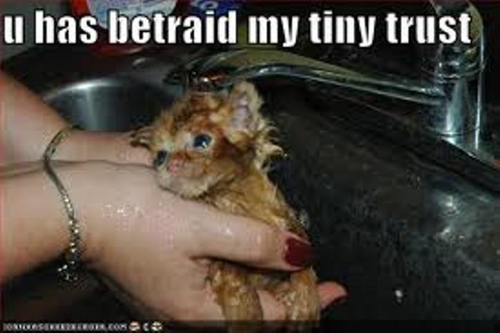 Look what chauvinism has done to this kitty! :'(
