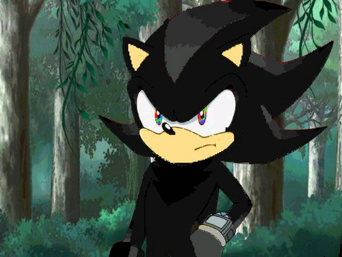 ME!!! SHADE THE HEDGEHOG!!! >:D