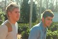 Niall & Zayn <3