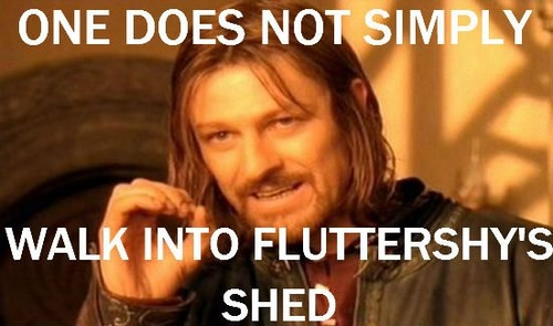 One does not simply walk into Fluttershy's shed.