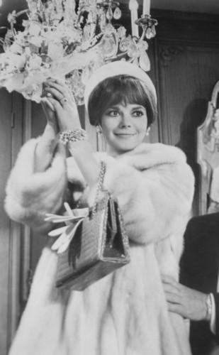 natalie wood wallpaper containing a pele, peles casaco titled Penelope (1966)