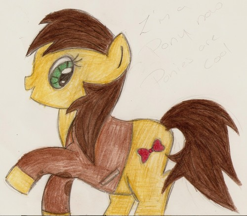 pony who