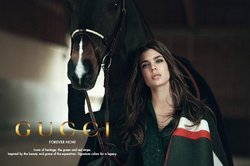 Prinzessin charlotte Casiraghi Hintergrund with a lippizan, a horse trail, and a horse wrangler titled Princess charlotte Casiraghi of Monaco is Gucci's New Face