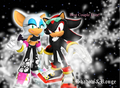 Shadow and Rouge Wallpaper - shadow-and-rouge photo