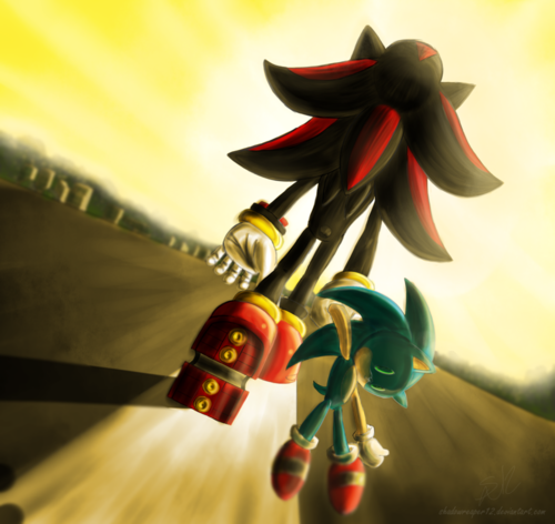 Shadow The Hedgehog wallpaper titled So Close Yet so Far