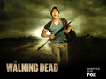 the-walking-dead - Glenn wallpaper
