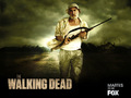 the-walking-dead - Dale Horvath wallpaper