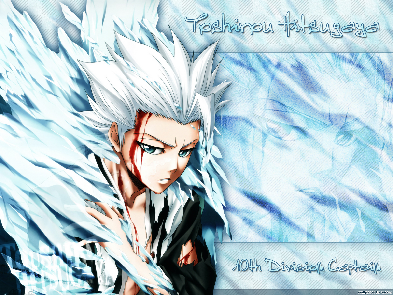 Bleach Forever Images Toshiro Hitsugaya HD Wallpaper And Background Photos