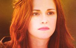 Twilight Saga. ♥