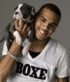 chris brown with dog