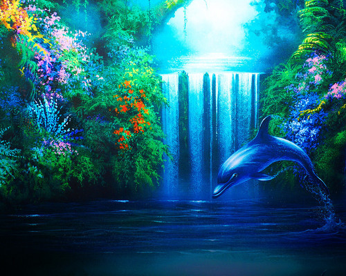 Dolphins images dolphins HD wallpaper and background photos