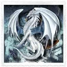 dragons - dragons Photo