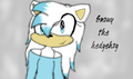 for : blossom1111 - sonic-fan-characters