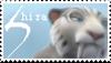 shira stamp