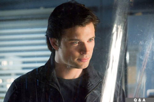 Tom Welling Hintergrund probably containing a sign titled tom welling