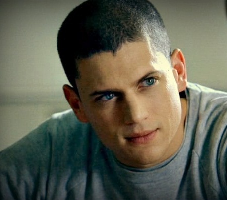 Wentworth Miller Hintergrund probably containing a portrait titled wentworth miller