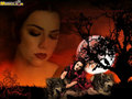 evanescence - ♥ Amy Lee ♥ wallpaper