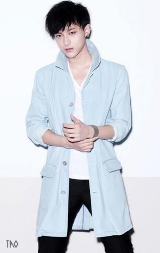 Official Website 写真 Tao