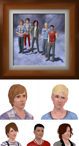 1D Sims Edition