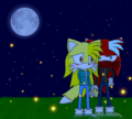 A beautiful night  - sonic-fancharacter-yuri photo