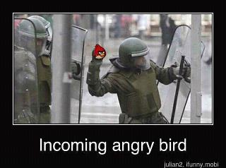 Angry Birds Funnies! - angry-birds Photo