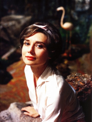 Audrey Hepburn wallpaper probably with an outerwear, a bathrobe, and a well dressed person called Audrey Hepburn