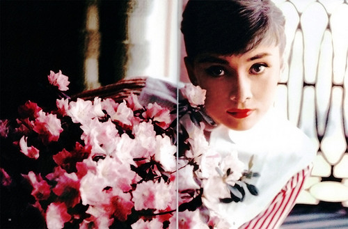 Audrey Hepburn wallpaper containing a bouquet and a japanese apricot called Audrey Hepburn