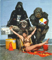 Beach party! - star-wars-comedy photo