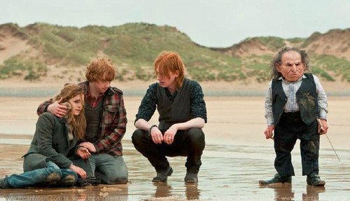 Bill, Ron and Hermione