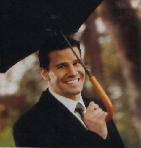 Seeley Booth wallpaper containing an academic vestido entitled Booth <3