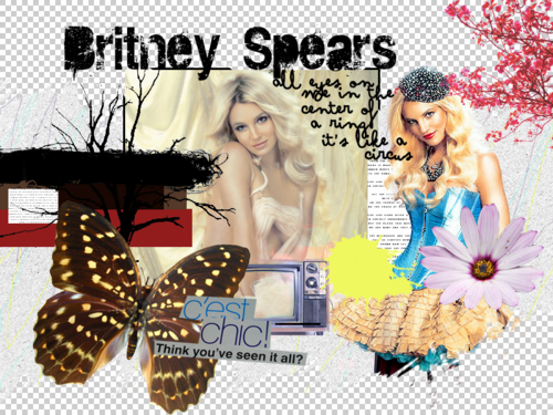 BritneySpears - britney-spears Wallpaper