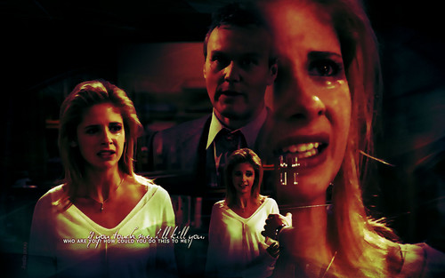 Buffy the Vampire Slayer wallpaper with a portrait titled BuffyTheVampireSlayer