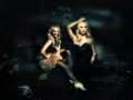 CandiceAccola - candice-accola wallpaper