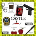 Castle <3