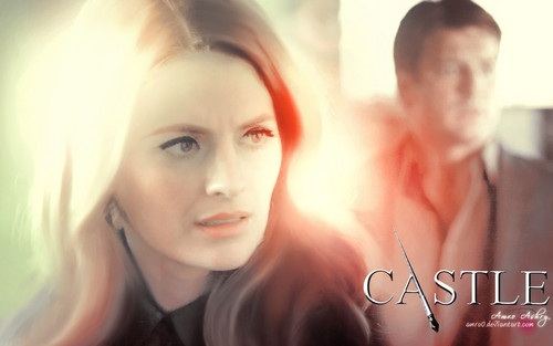 Castle wallpaper containing a portrait called Castle Tv Show wallpapers