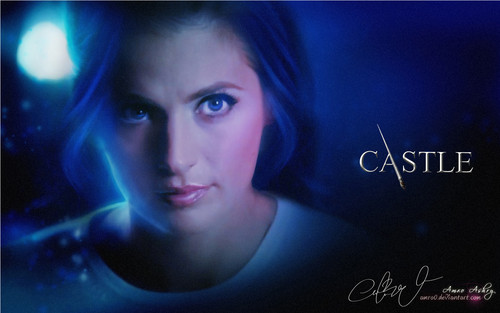 Castle wallpaper titled Castle Tv Show wallpapers