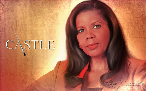 Castle wallpaper containing a portrait titled Castle Tv Show wallpapers