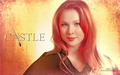 Castle Tv Show wallpapers