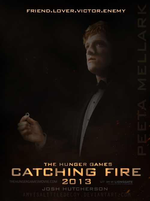 Catching Fire - The Hunger Games Photo (30409587) - Fanpop