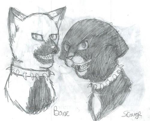 Dark Forest Cats :p