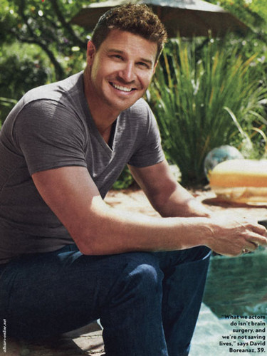 David Boreanaz wallpaper possibly with a tamale and a lunch entitled David <3