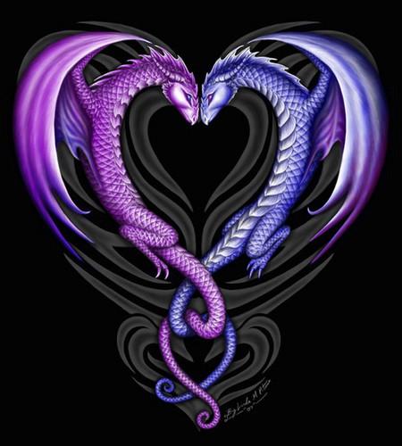 Dragon hati, tengah-tengah