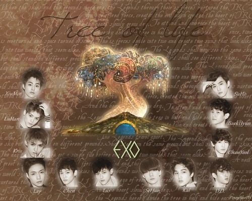 Exo 壁纸 树 OF LIFE
