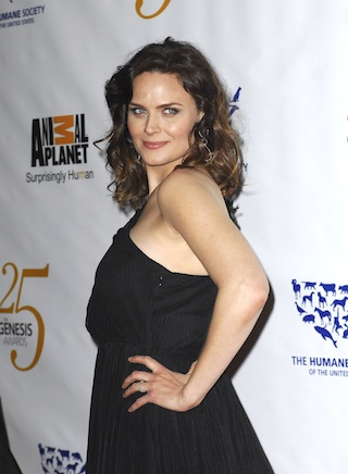 Emily Deschanel wallpaper probably containing a cocktail dress and a portrait titled Emily <3