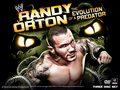 Evolution of a Predator - randy-orton wallpaper